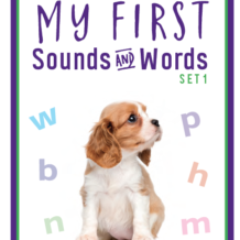 Product Review:  My First Sound and Word Cards